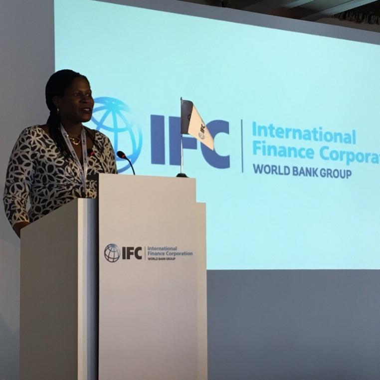 Uluslararası Finans Kurumu Türkiye Direktörü Williams: Türkiye'ye 1 Milyar Dolar Yatırım Öngörüyorüz | Turkishny.com